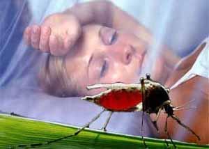 спящая женщина и комар