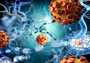 вирус, вызывающий менингококковую инфекцию