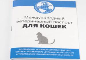 ветеринарный паспорт кошек