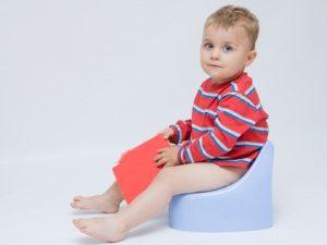 мальчик сидит на горшке