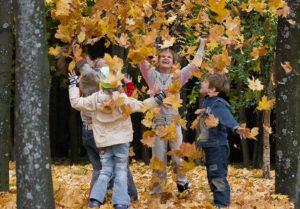 дети подкидывают вверх жёлтые листья