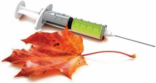 шприц с вакциной и осенний лист