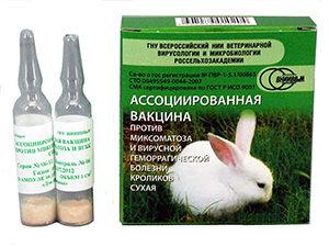пачка и ампулы вакцины для кроликов
