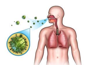 передача вируса кори воздушно-капельным путём рисунок