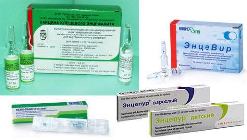 вакцины для прививок от клещевого энцифалита