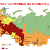 карта России с отмеченными эндемичными территориями по клещевому энцефалиту