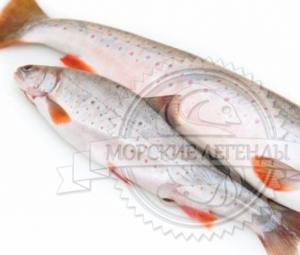 Как выбрать свежемороженную рыбу