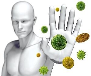формирование иммунитета прививкой БЦЖ