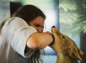 женщину за руку кусает собака