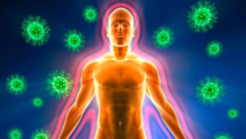 рисунок иммуной защиты человека