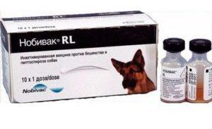 вакцина «Нобивак RL»