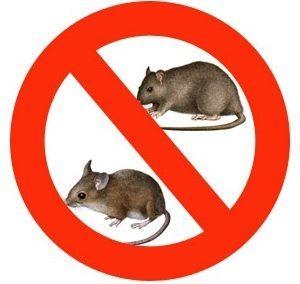 знак «Нет грызунам»