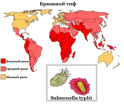 карта с обозначением стран распространения брюшного тифа